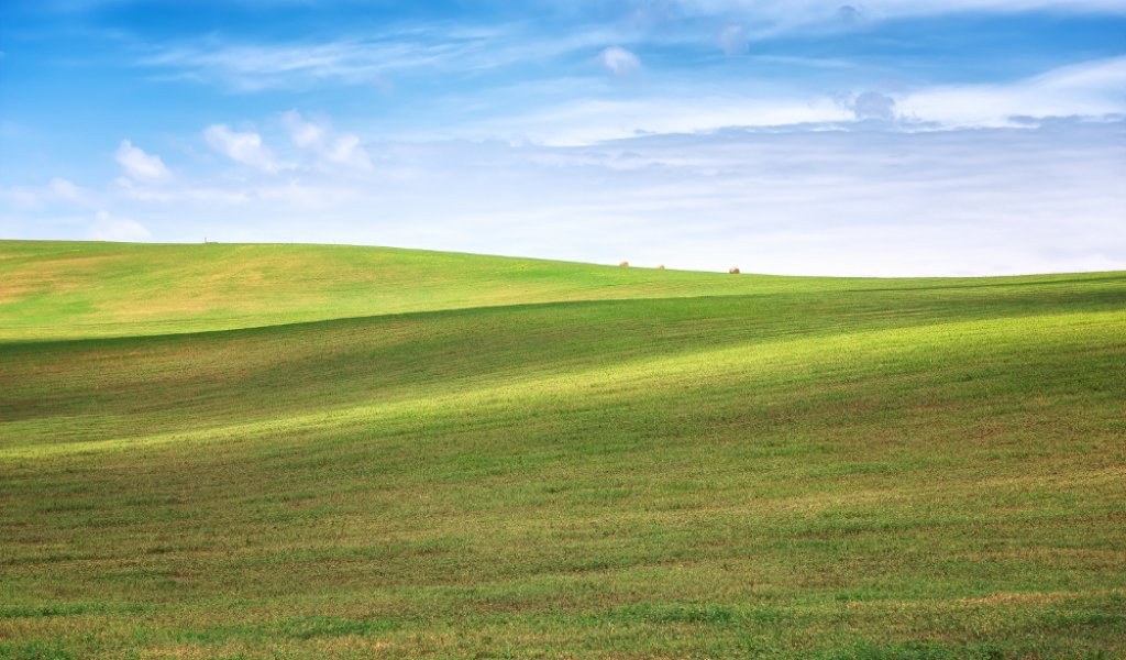 Amazing landscape with green wheat field and rolling hills in South Moravia, Czech Republic